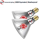 Explux 250W Equivalent LED PAR38 Flood Light Bulbs, Weatherproof, 2600 Lumens, Dimmable, 5000K Daylight, 2-Pack