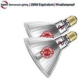 Explux 250W Equivalent LED PAR38 Flood Light Bulbs, Weatherproof, 2600 Lumens, Dimmable, 2700K Soft White, 2-Pack