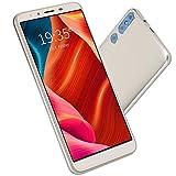 Lazmin112 Smartphone Dual SIM con Schermo HD da 5.0 Pollici P20PLUS, Telefono con sblocco Android Doppia Fotocamera da 200 W 512 MB + 4G(Oro)