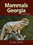 Mammals of Georgia Field Guide (Mammal Identification Guides)