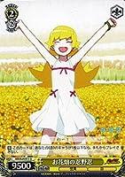 ヴァイスシュヴァルツ お花畑の忍野忍 アンコモン NM/S24-011-U 【偽物語】