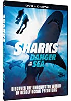 Sharks: Danger in the Sea Collection [DVD] [Import]