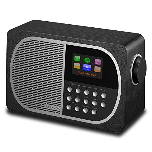 LEMEGA M2+ 7W Portable Internet FM Digital Radio with Wi-Fi, Bluetooth, USB, Aux & TFT Colour Display – Black Oak