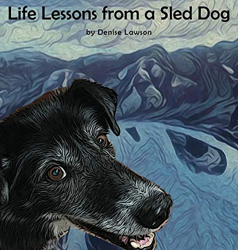 Life Lessons from a Sled Dog