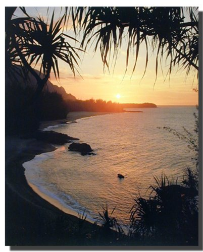 Tropical Sunset At Ocean Beach Scenery Wall Decor Art Print Poster (16x20)