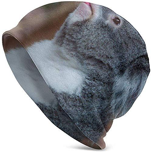Peeeenny Beeen Divertido Gorro de Hombre con Osito de Koala, Gorros Suaves, abrigados y Suaves, Comodidad Durante Todo el año, Gorros serios, Gorro Delgado de Punto con Gorro Holgado.