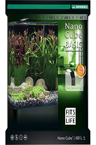 Dennerle Nano Cube Basic 30 Liter - Mini Aquarium mit Abgerundeter Frontscheibe
