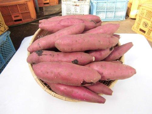 鹿児島県産 西山さんちの低温熟成酵素紅はるか M~Lサイズ さつまいも5kg