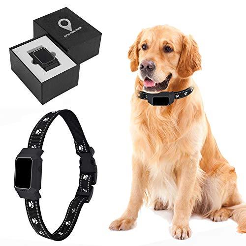 DCUKPST Localizzatore GPS per Cani, Collare GPS Cane Mini Pet Tracker, Gatti Localizzatore di Dispositivo di localizzazione in Tempo Reale, App Controllo