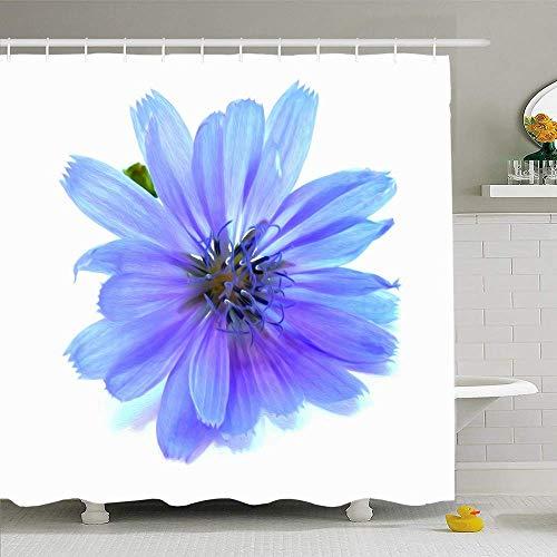 N/A douchegordijnenset met haken 72x72 groen mooie tekening blauwe cichorei bloem natuur Bachelors aquarel bloesem stapelbed plantknoppen waterdicht polyester stof baddecoratie voor badkamer