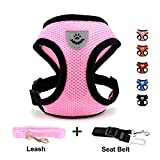 Best cat harness - INVENHO Mesh Harness with Padded Vest for Puppy Review
