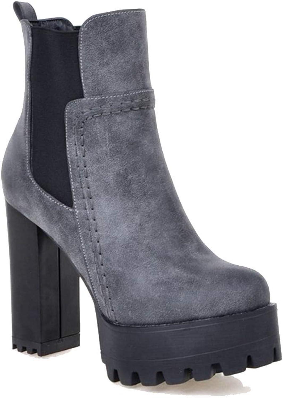 Elsa Wilcox Women's Casual Platform Block Heel shoes Buckle Round Toe Chunky Heeled Ankle Booties Side Zip