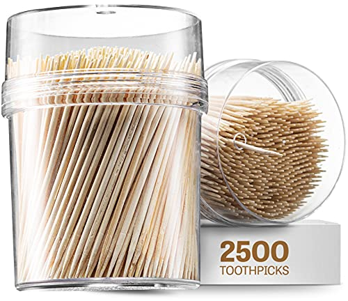2500 Wooden Toothpicks - With Reusable Holder | Sturdy Smooth Finish Tooth Picks | Cocktail Picks | Toothpicks For Appetizers | Toothpicks Wood