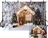 MEHOFOND - Fondo de fotografía de invierno para fiestas de Navidad (2,1 x 1,5 m)