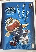 ガリガリ君 サッカー日本代表 クリアファイル