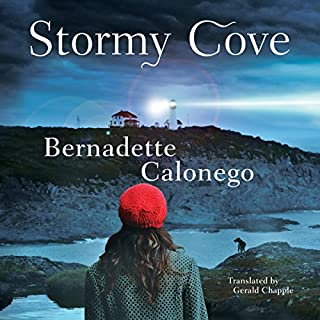 Stormy Cove cover art