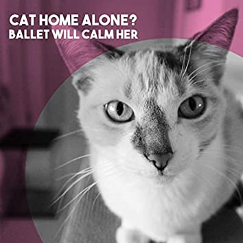 Cat Home Alone?  Ballet Will Calm Her