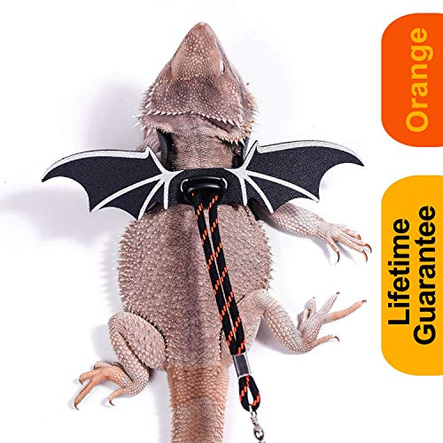 WATFOON Adjustable Lizard Leash Bearded Dragon Harness Soft Leather Cool Wings Training Leashes for Reptiles Leopard Gecko Anole Hamster Rats Rabbit Bird Small Pet Animals (M, Black Orange)