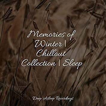 Memories of Winter   Chillout Collection   Sleep