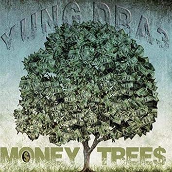 Money Tree$