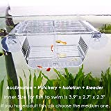 capetsma Fish Breeding Box, Acrylic Fish Isolation...