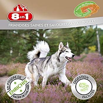 8in1 Fillet Pro Digest Friandises pour chiens adultes et seniors de grandes races – Favorise la santé digestive – Au poulet – Lot de 4 x 80g