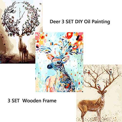 DIY Paint by Numbers for Adults Framed,Oil Painting by Numbers for Beginner Adult Paint by Number Kits 16x20 Inches 3 Pack