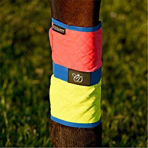 Equisafety Horse Charlotte Dujardin - Stivali Impermeabili per Cavalli, Colore: Rosa/Giallo
