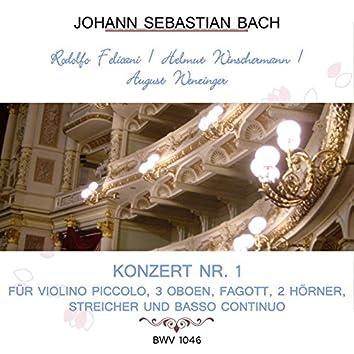 Rodolfo Felicani / Helmut Winschermann / August Wenzinger play: Johann Sebastian Bach: Konzert NR. 1 - für Violino piccolo, 3 Oboen, Fagott, 2 Hörner, Streicher und Basso continuo, Bwv 1046 (Live)