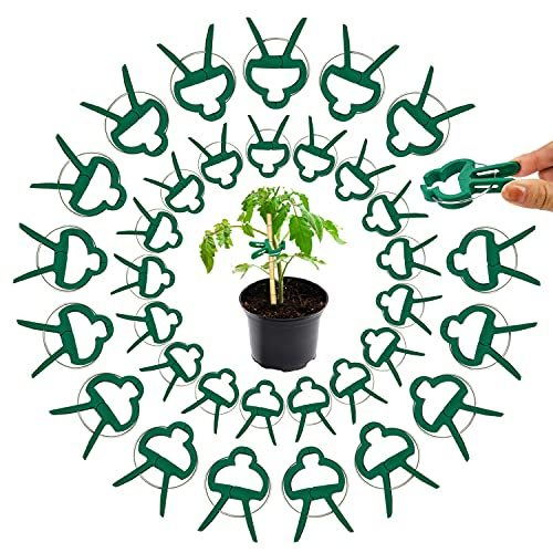 Pflanzen Clips,Pflanzenklammern,Pflanzenclips 60 Stück,Pflanzenklammern Grob Klein(2 Gröbe),Rankhilfe Tomaten,Pflanzen Klammern,Rankhilfe für Pflanzen,Stabile Klammern für Kletterpflanzen Befestigung