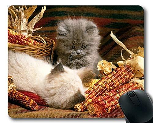 Mäusematte, tierische süße Fruchtkatzenmais-Mausunterlage, Mäusematte für Computer cat236