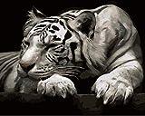 YUHHGFK DIY Pintura por Números Tigre Animal Pint por Número de Kits con Pinceles y Pinturas para Adultos, niños y Principiantes Decoraciones Hogar - 40 X 50 cm (con Marco de Madera)