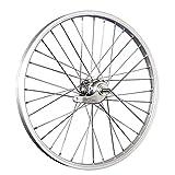 Taylor-Wheels 20 Pulgadas Rueda Trasera Bici buje Freno contrapedal Plateado