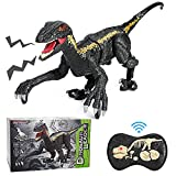 Mini Tudou R/C Dinosaur Toys,Walking Robot Dinosaurs Toy with LED Light and Roaring Sound,2.4Ghz Remote Control Electronic Simulation Velociraptor Toys for 3+ Years Old Kids