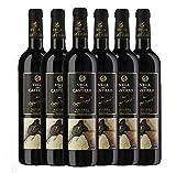 Vega del Castillo Crianza - Vino Tinto - DO Navarra - Pack de 6 botellas 750ml - Total 4500ml