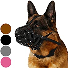german shepherd professional training