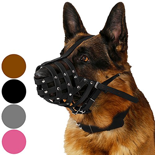 CollarDirect Dog Muzzle German Shepherd Dalmatian Doberman Setter Leather Basket Medium Large Breeds Black Brown (L, Black)