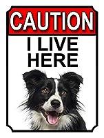 ここに住んでいる注意 金属板ブリキ看板警告サイン注意サイン表示パネル情報サイン金属安全サイン