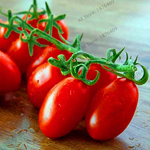 Bloom Green Co. Perte de promotion! 100pcs / sac flores tomate cerise. Rare Balcon potager fruits bio Bonsai plantes en pot (rouge, jaune) Pour: 10