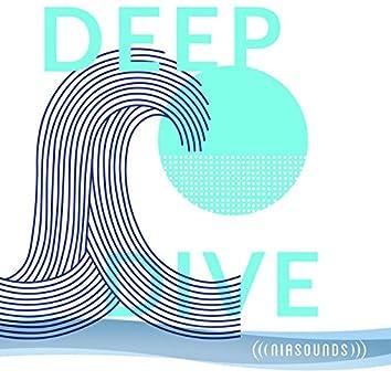 NiaSounds: Deep Dive
