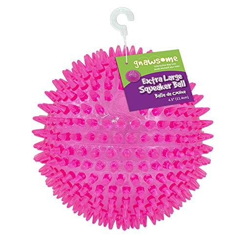 "Gnawsome 4.5"" Spiky Squeaker Ball Dog Toy - Extra Large, Cleans Teeth and Promotes Good Dental and Gum Health for Your Pet, Colors will vary"