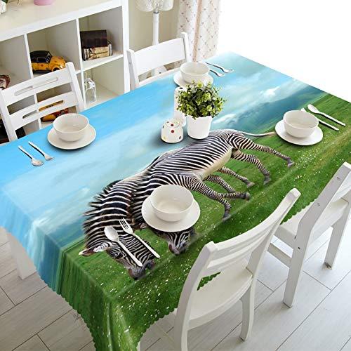 Cinnanal Rechteckig Tischtuch Stoff Polyester Wasserdicht Tischdecke Gartentisch Prairie Zebra für Esstischplatte Café Wohnzimmer 110X170cm Schwarz Weiß Grün