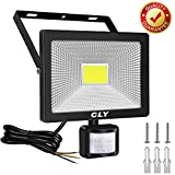 CLY 30W Security Lights, LED Floodlight with Motion Sensor, 75W HPS Lights Equivalent Replaced, Daylight White...