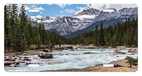 zaeshe3536658Landschaft Nummernschild, Foto von Kalkstein Creek in der Alberta Kalten Winter Time Adventure Bild Print, Aluminium Neuheit Teller, 15,2x 30,5cm.