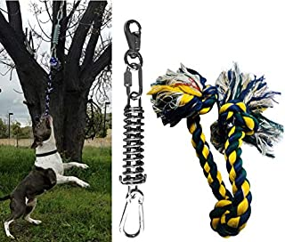 SoCal Bully Spring Pole - (1) Dog Conditioner - Muscle Builder - (1) $15 Value Heavy Duty 3 Knott Tug Rope Toy Included! - Healthy Teeth Flosser-Fun for Pitbull & All Breeds! - Free Prime Shipping!