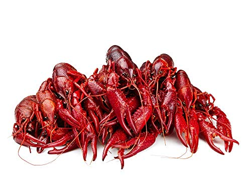 Louisiana Boiled Crawfish 10 lbs
