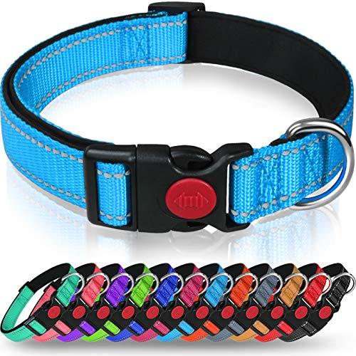 Taglory Hundehalsband, Weich Gepolstertes Neopren Nylon Hunde Halsband für Welpen, Verstellbare und Reflektierend für das Training, Himmelblau