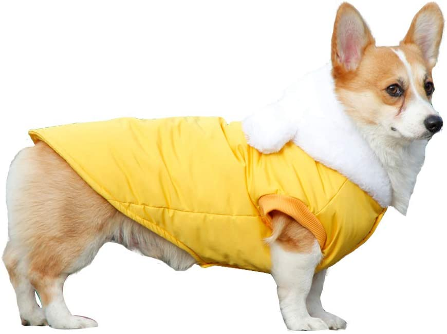 Pet Clothes Dog Be super welcome Winter Waterproof Ranking TOP8 Jacket Warm Hooded Cold Coat