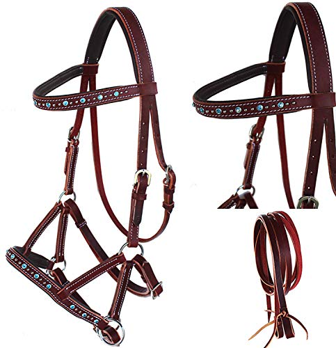 English Western Horse Leather BITLESS Bridle SIDEPULL Halter REINS 77RS05TR-F