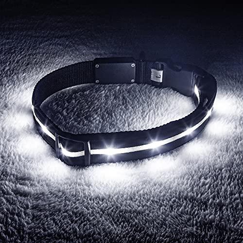 Product Image 2: Blazin' Safety LED Dog Collar